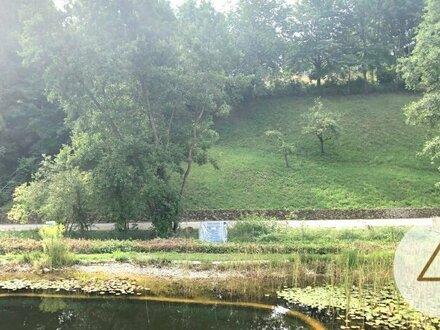 Wohnung in Dietach mit Schwimmteich