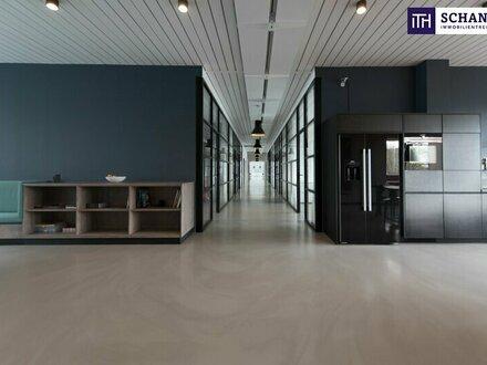 TOP UNTERNEHMENSSTANDORT IN BESTER WIENER INNENSTADTLAGE! PROVISIONSFREI! FLÄCHEN VON 12 m² BIS 500 m²!