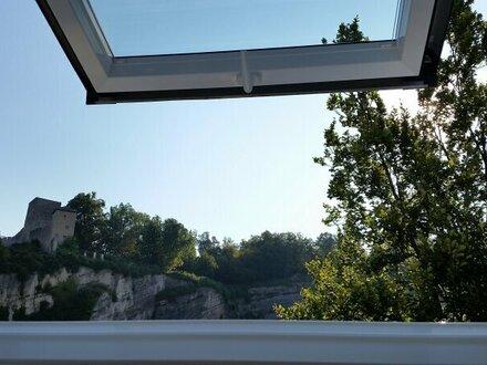 Roof TOP innere Riedenburg