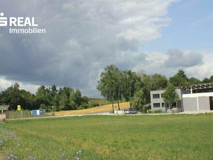 Günstiges Betriebsgrundstück in Amstetten-Nähe!