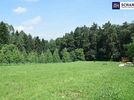 TRAUM VOM EIGENHEIM: Voll aufgeschlossenes, bereits eingezäuntes und idyllisches Grundstück in absoluter Ruhelage Nitscha/Gleisdorf!…