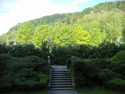 Schöne 2-Zimmer-Wohnung mit Loggia in Salzburg/Parsch zu vermieten
