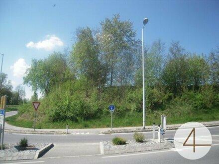 Top-Gewerbegrundstück 6000m² in Ried im Innkreis MB1