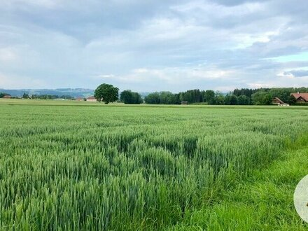 Sonnige Grundstücke Ortsrandlage Waizenkirchen