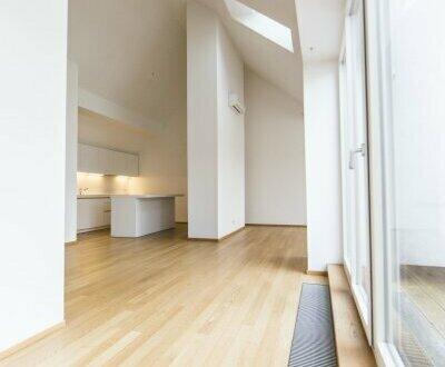 Bezaubernde und großzügige DG-Wohnung mit Terrasse in 1050 Wien zu vermieten!
