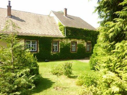 Historische Mühle an der Thaya in Waidhofen