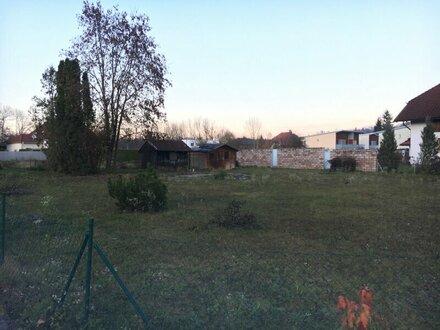 Baugrundstück für Ihr Eigenheim zwischen Thalheim und Steinhaus