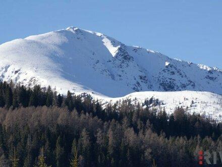 Blick auf den Winterthaler