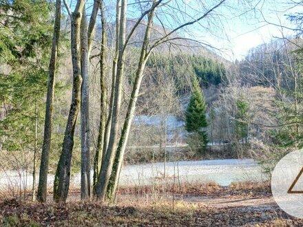 Tourismusbranche aufgepasst: Grundstück im herrlichen Almtal!