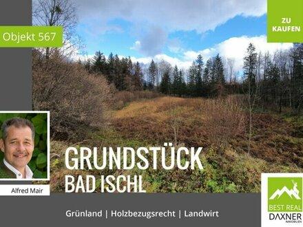 Grünland Grundstück in Bad Ischl mit Holzbezugsrecht