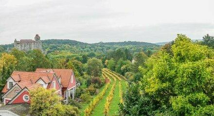 Sanierungsbedürftiges Einfamilienhaus mit traumhafter Aussicht in Maria Enzersdorf zu verkaufen!
