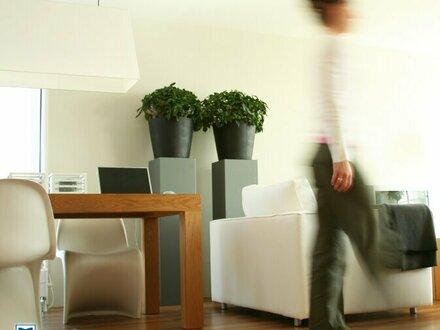Moderne hochwertige 2-Zimmer-Whg (T5) in Elsbethen