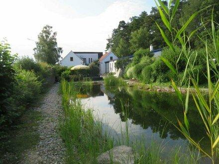 Wohnhaus mit Schwimmteich und viel Grund Nähe Hartberg