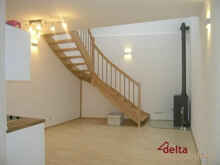 Neu renovierte gemütliche Mietwohnung im Zentrum von Bad Ischl
