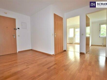 Tolle Wohnung direkt beim Währinger Park! Grün, ruhig, wunderschön!