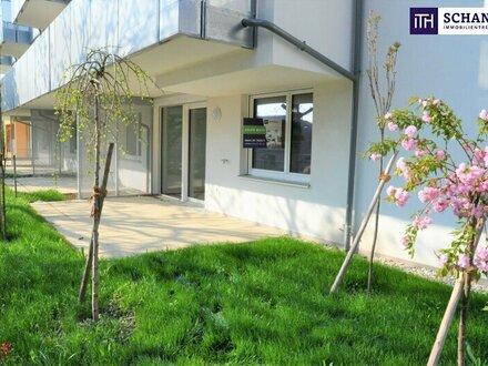Eigengarten + 3-Zimmer + gute öffentliche Anbindung + beliebte Wohngegend + tolle Raumaufteilung!