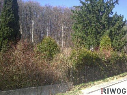 EIGENHEIM - Baugrund in idyllischer Lage nahe der Sophienalpe