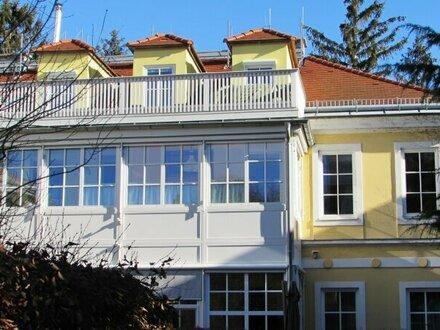 sonnige loftartige Wohnung mit 2 Wintergärten