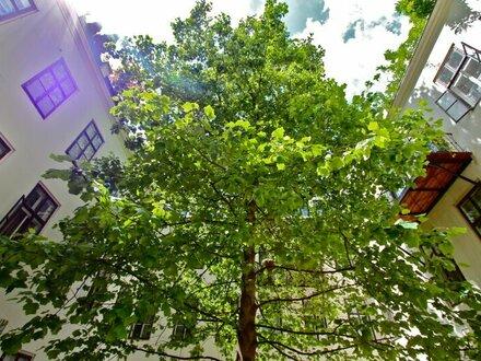 EUM – RARITÄT! Altbaujuwel im dritten Liftstock mit idyllischer Terrassenoase in absoluter Bestlage