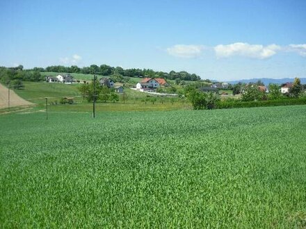 Baugrund Wiesen-Ackerland Nähe Oberwart 8729 m²