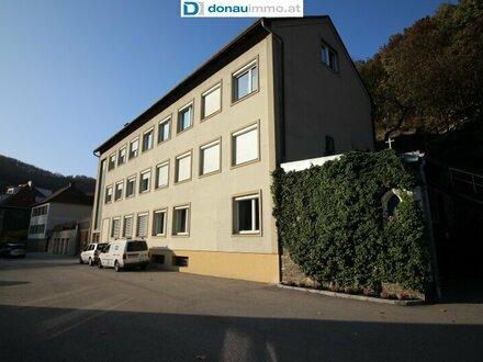 3500 Krems kleine feine stylische 2 Zimmer DG-Wohnung mit kleinem Garten in Ruhelage