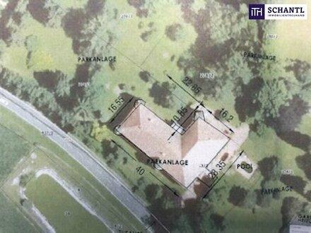 Leben wie ein König - im Schloss - Parkanlage mit Teich - Biomasseheizung!