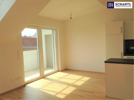 AB INS DACHGESCHOSS! Penthouse Wohnung + Sonnenterrasse + Grüner Innenhof + FH-Nähe + Nähe Schloss Eggenberg!