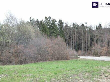 """Grundstück gefunden! Perfekt ausgerichtetes TRAUM-Grundstück für """"Häusl""""-Bauer in fantastischer Lage!"""