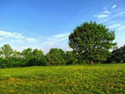 Grundstück mit Baubewilligung in Sievering