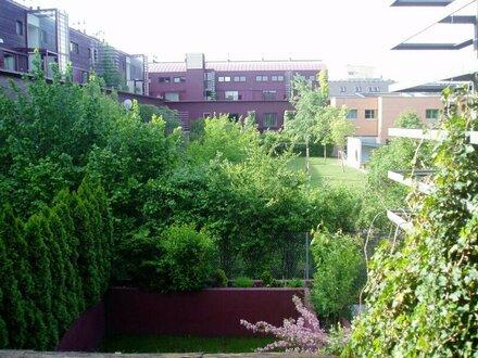 3 Zimmerwohnung in Viehtriftgasse!, 1210 Wien