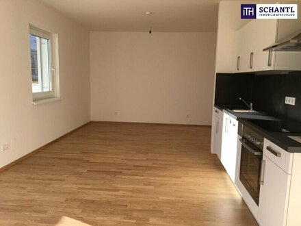 NEUWERTIG: Feine Single-Wohnung mit traumhafter Loggia + Ideale Raumaufteilung + Sehr gepflegtnach Sanierung