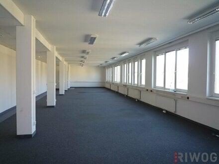 Büroflächen mit 124,40m² und 273m²
