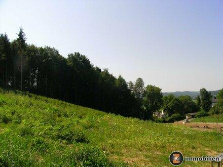 Jennersdorf: Große Bauparzelle mit Grünland in Aussichtslage