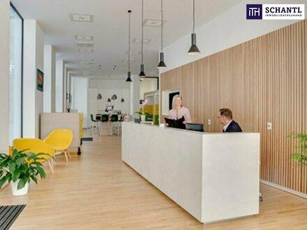 Rundum-Service inkl. Ausstattung! PROVISIONSFREI! Ihr neues Büro in der Linzer-Innenstadt! PRESTIGE!