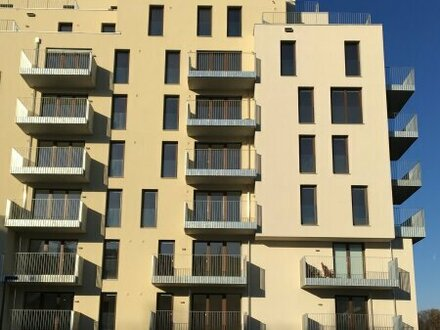 südseitige 3-Zimmerwohnung mit Ausblick in Hoflage PROVISIONSFREI ! Erstbezug!