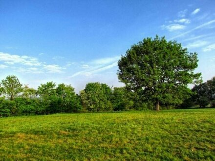 8.750 m² großes, ruhiges Grundstück in Hadersdorf-Weidlingau