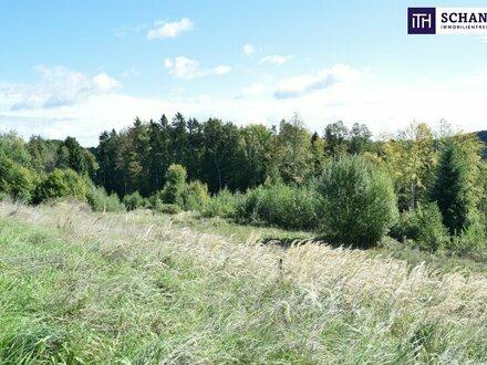 HERRSCHAFTLICHES, TOLLES Grundstück in nobler Familien-/Villenlage in 8075 Hart bei Graz - Ganztags-Sonne garantiert!