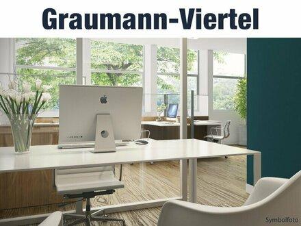 Kaufen statt Mieten – Ihr Neubau-Büro oder Atelier im Zentrum von Traun | Top 1.0.4