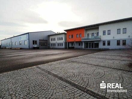 Betriebsliegenschaft mit Halle und Bürogebäude Wels/Thalheim - Miete
