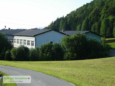 Betriebsstandort Gewerbepunkt Georgenberg für Ihre Geschäftsidee