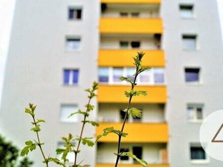 Gut Aufgeteilte, 3 Zimmer Wohnung in toller Lage mit Renovierungsbedarf