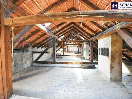 Baubewilligter Rohdachboden + 3,9m Raumhöhe + Schönes Altbauhaus + TOP Infrastruktur und Anbindung! Verwirklichen Sie Ihren…