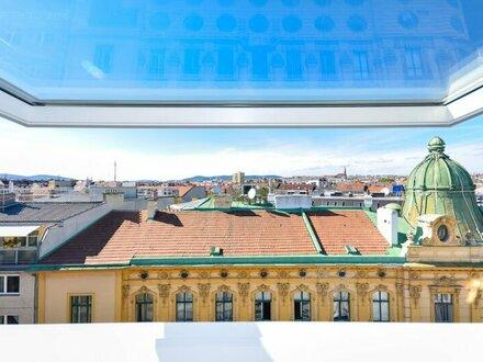 2 Zimmer Wohnung mit großer Terrasse