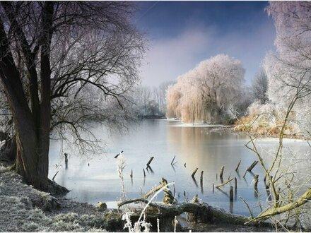 Teichanlage Nähe Heidenreichstein