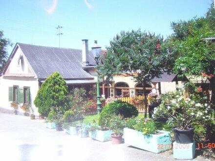 Top Landhaus - nähe Großpetersdorf