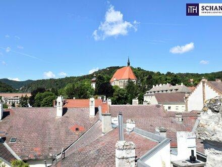 EINZIGARTIG in Mödling!!! Absolute Luxuswohnung mit Dachterrasse in Bestlage!!!
