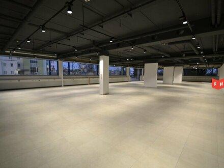 Showroom mit kompletter Glasfront inkl. Büro- und Lagerflächen im IKANO in Wr. Neudorf Nähe SCS
