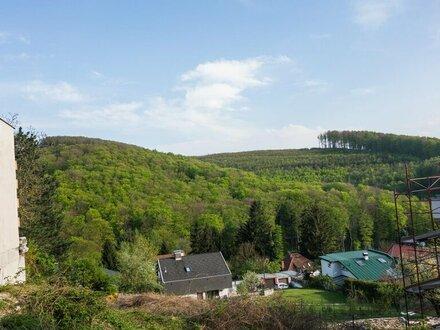 Zwei Baugrundstücke mit 1389 m2 in Wien Penzing Nähe Untermauerbach zu verkaufen!