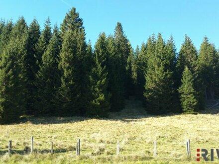 ##Schöner sonniger Baugrund in Liftnähe - Flattnitz i. Kärnten##