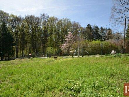 Hinaus ins Freie - Sonniger Baugrund im Wienerwald